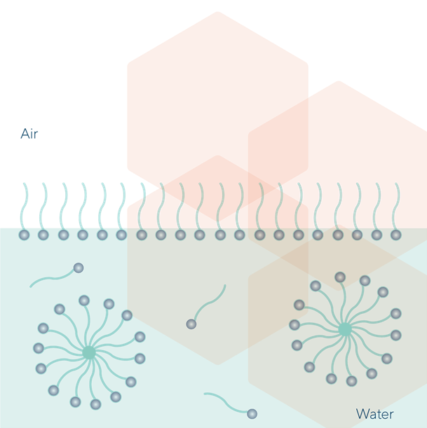 Micelles Formation