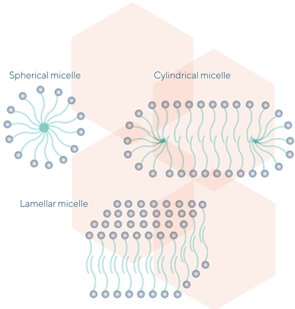 Different types of Micelles